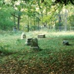 Bachelors_Grove_Cemetery_MattHucke_group