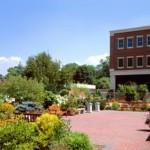 the-radnor-gardens